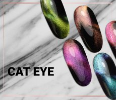 Collection Cat EYE